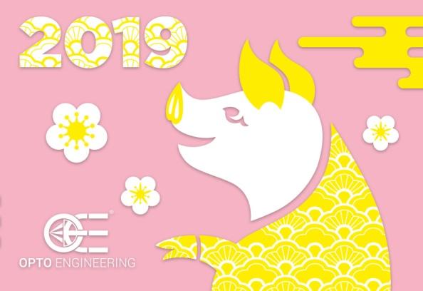 New Year China 2019